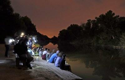 """""""La Nit dels Ratpenats"""" aquest divendres a la Mitjana posa en marxa el nou programa d'Ecoactivitats"""